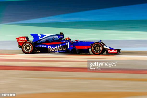 Daniil Kvyat of Scuderia Toro Rosso and Russia during the Bahrain Formula One Grand Prix at Bahrain International Circuit on April 16 2017 in Bahrain...