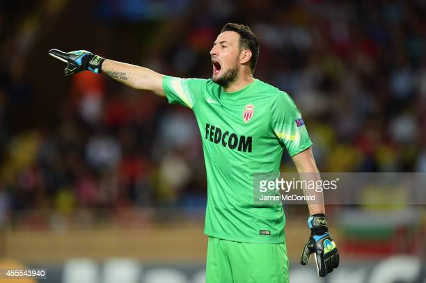Danijel Subasic of Monaco gives direction during the UEFA Champions League Group C match between AS Monaco FC and Bayer 04 Leverkusen at Louis II...