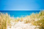 West coast of Jutland, Denmark. Sand dunes with dune grass.