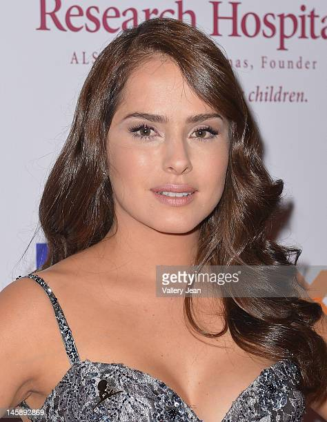 Danna Garcia attends St Jude Angels Stars Gala at JW Marriott on May 19 2012 in Miami Florida