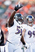 Dannell Ellerbe of the Baltimore Ravens celebrates a sack during the game against the Cincinnati Bengals at Paul Brown Stadium on December 30 2012 in...