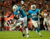 Dannell Ellerbe of the Miami Dolphins catches an interception as Mohamed Sanu of the Cincinnati Bengals and Jimmy Wilson of the Miami Dolphins battle...