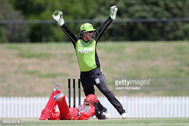 Danni Wyatt of the Renegades is run out during the WBBL match between the Melbourne Renegades and Sydney Thunder at Blacktown International...