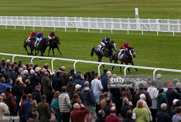 Danny Brock riding Cat Royale win The Browns All Bar One Windsor Handicap Stakes at Windsor Racecourse on April 18 2016 in Windsor England