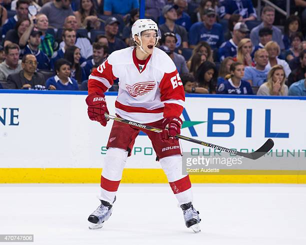 Danny DeKeyser of the Detroit Red Wings against the Tampa Bay Lightning in Game Two of the Eastern Conference Quarterfinals during the 2015 NHL...