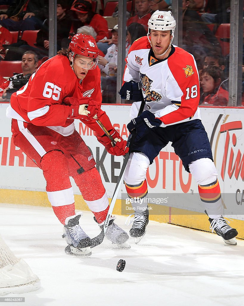 Danny DeKeyser #65 of the Detroit Red Wings and Shawn Matthias #18 of the Florida Panthers battle for the puck behind the net during an NHL game on January 26, 2014 at Joe Louis Arena in Detroit, Michigan.