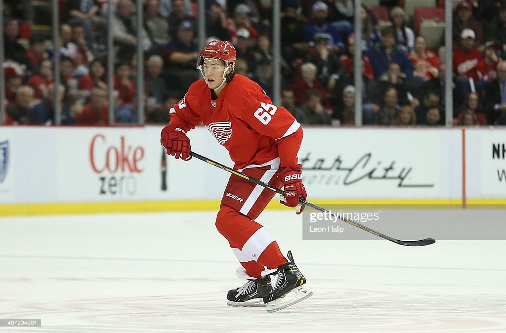Danny DeKeyser #65 of the Detroit Red Wings looks for the puck during the second period of the game against the Vancouver Canucks at Joe Louis Arena on February 3, 2014 in Detroit, Michigan. The Red Wings defeated the Canucks 2-0.