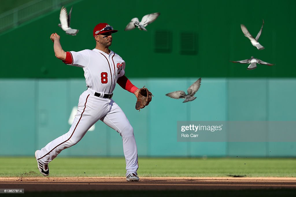 Danny Espinosa #8 of the Washington Nationals makes a throw to first base for the second out of the seventh inning against the Los Angeles Dodgers while birds fly nearby during game two of the National League Division Series at Nationals Park on October 9, 2016 in Washington, DC.