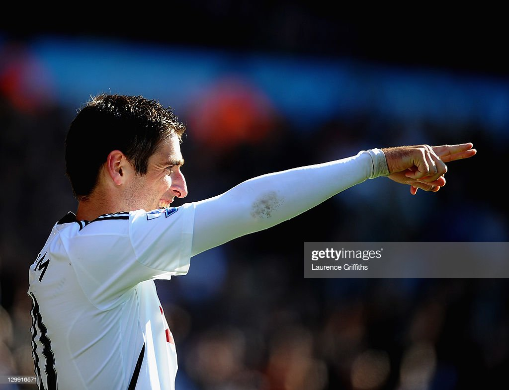 Danny Graham of Swansea City battles celebrates his goal during the Barclays Premier League match between Wolverhampton Wanderers and Swansea City at...