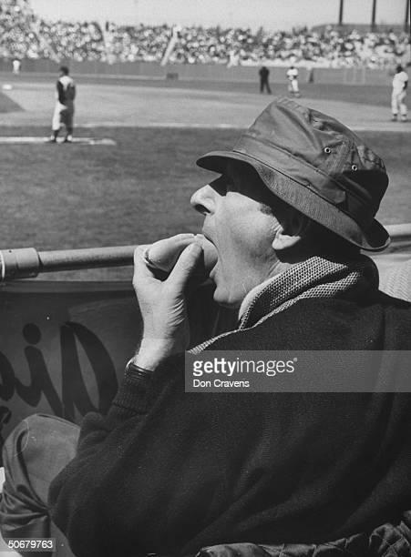 Danny Kaye eating a hot dog at a baseball game