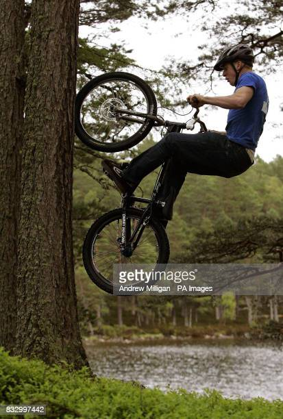 Danny MacAskill shows his skills by climbing a tree near Lochan Eilein in preparation for the Outside Festival midsummer weekend in Rothiemurchus...
