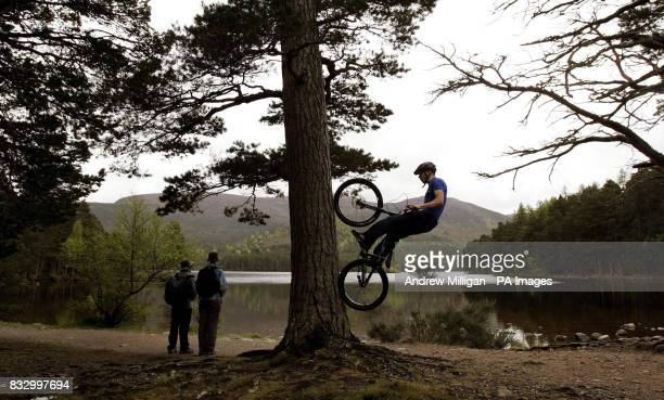 Danny MacAskill shows his skills by tree climbing on the shores of Lochan Eilein in preparation for the Outside Festival midsummer weekend in...