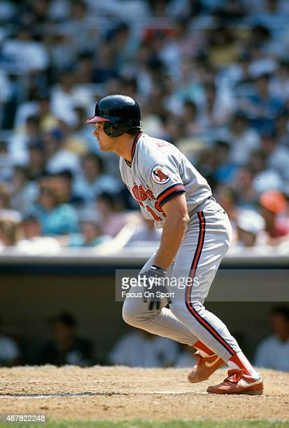Dante Bichette of the California Angels bats against the New York Yankees during an Major League Baseball game circa 1990 at Yankee Stadium in the...
