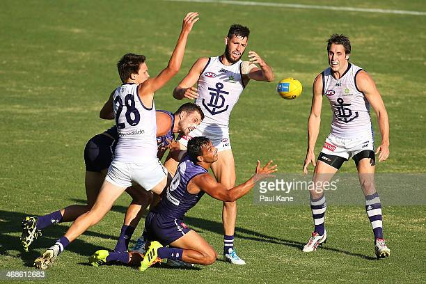 Danyle Pearce of the Dockers looks to gather the ball during a Fremantle Dockers AFL IntraClub match at Patersons Stadium on February 11 2014 in...