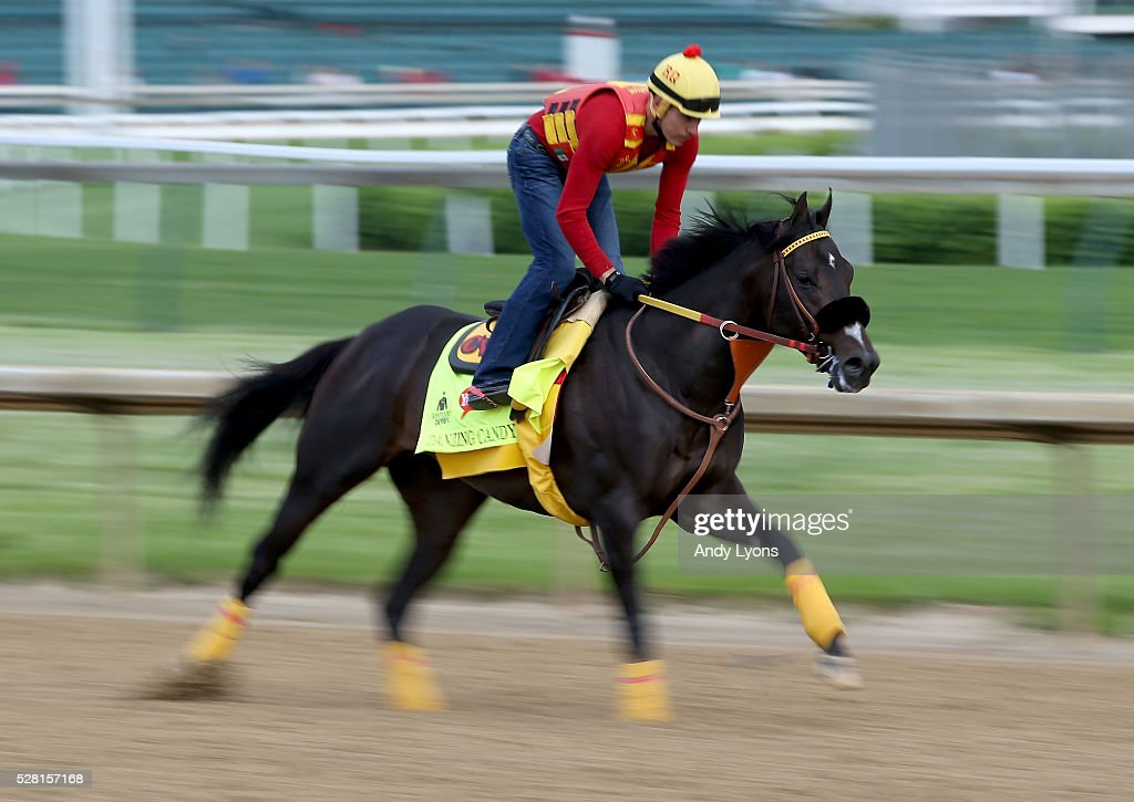 Danzing Candy runs on the track during the morning training for the 2016 Kentucky Derby at Churchill Downs on May 04, 2016 in Louisville, Kentucky.