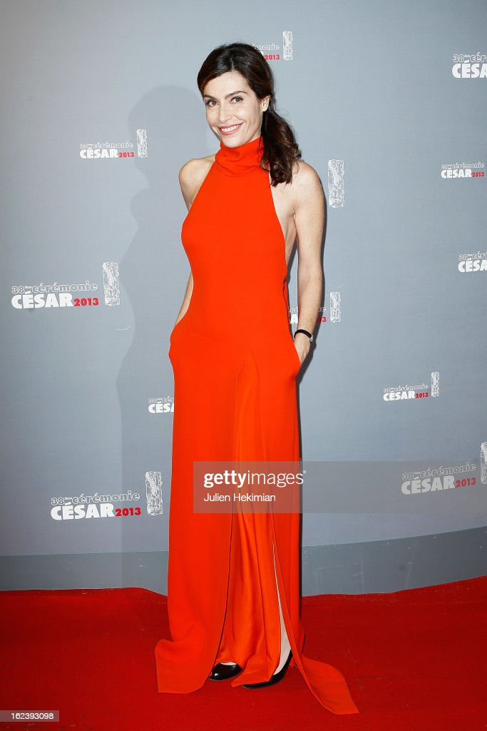 <a gi-track='captionPersonalityLinkClicked' href=/galleries/search?phrase=Daphne+Roulier&family=editorial&specificpeople=613209 ng-click='$event.stopPropagation()'>Daphne Roulier</a> attends the Cesar Film Awards 2013 at Theatre du Chatelet on February 22, 2013 in Paris, France.