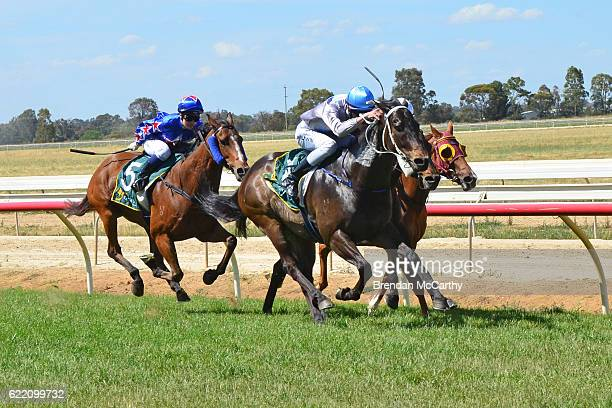 Darci's Money ridden by Stephen M Brown wins 1Print BM58 Handicap at Echuca Racecourse on November 10 2016 in Echuca Australia