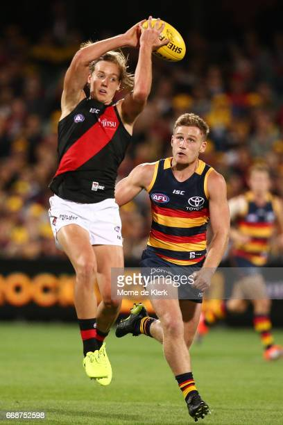 Darcy Parish of the Bombers competes for the ball in front of Rory Laird of the Crows during the round four AFL match between the Adelaide Crows and...