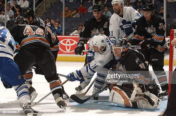 Darcy Tucker of the Toronto Maple Leafs looks for the puck against Olaf Kolzig of the Washington Capitals during a game on November 6 2005 at MCI...