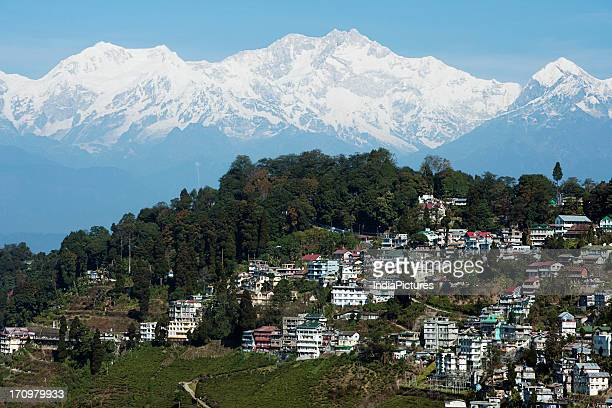 Darjeeling hill station with buildings trees and snowcapped peaks of the eastern Himalayas in the background Darjeeling West Bengal India