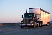 A modern, dark, compact, powerful big rig semi truck with a day cab for shorter journeys within a day's journey with a long semi trailer for the carriage of bulk cargo is moving along a wide highway i