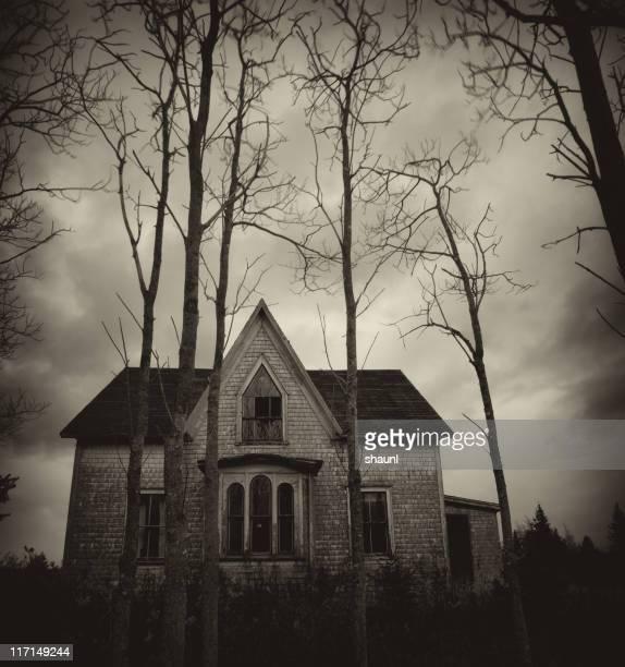 Oscuridad su hogar