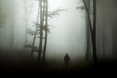Spooky silhouette in scary misty forest