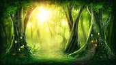 Dark magic forest with sunshine