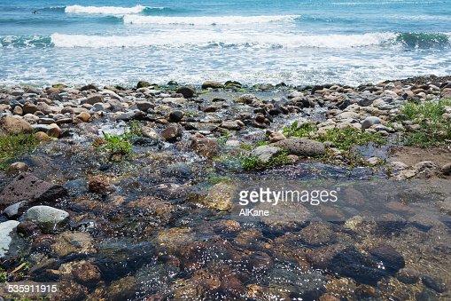 dark pebble in Santa Caterina di Pittinuri shoreline : Stock Photo