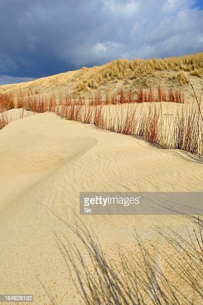 Dark sky over the dunes