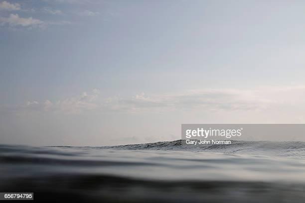 Dark swell of ocean surface