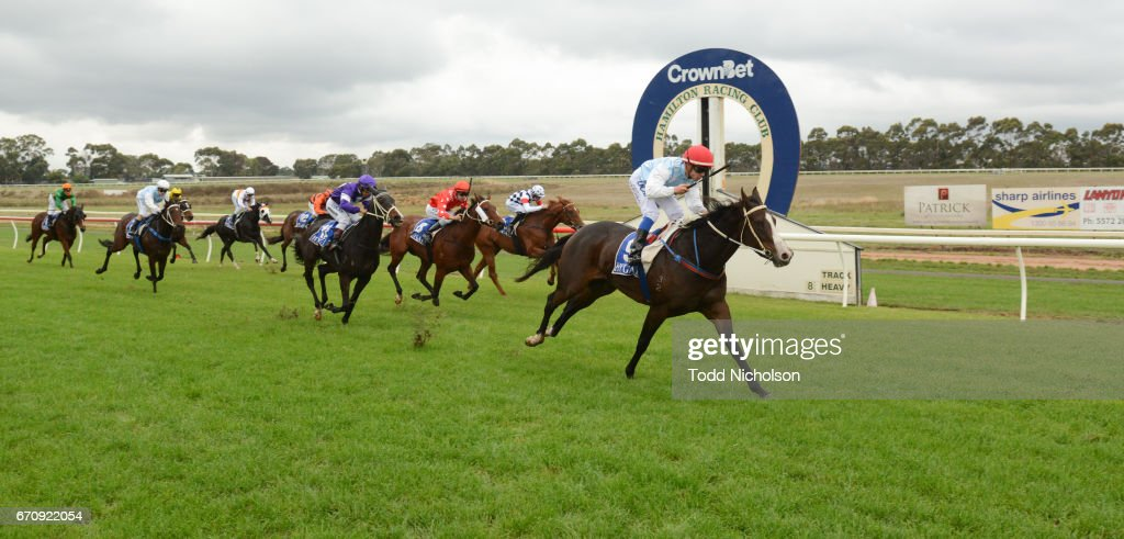 Darken Up (NZ) ridden by Chris Caserta wins the Greg Annett Painter & Decorator Maiden Plate at Hamilton Racecourse on April 21, 2017 in Hamilton, Australia.