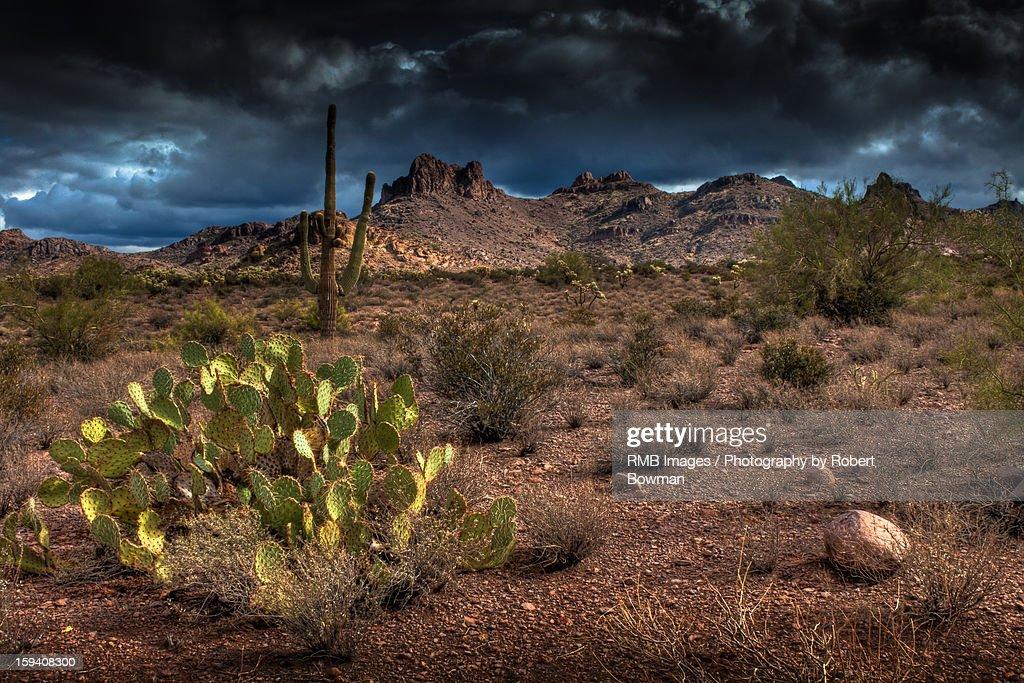 Darkening Desert : Stock Photo