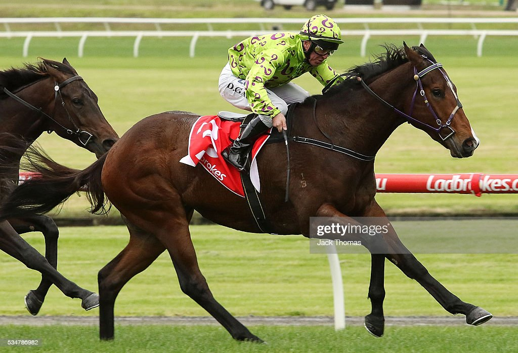 Darren Gauci riding Moshway wins Race 2 during Melbourne Racing at Sandown Lakeside on May 28, 2016 in Melbourne, Australia.