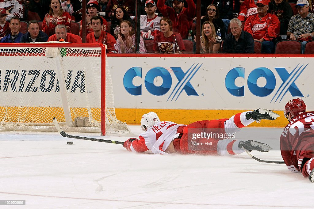 Darren Helm #43 of the Detroit Red Wings falls to the ice as he scores an open net goal during the third period against the Arizona Coyotes at Gila River Arena on February 7, 2015 in Glendale, Arizona. The Red Wings defeated the Coyotes 3-1.
