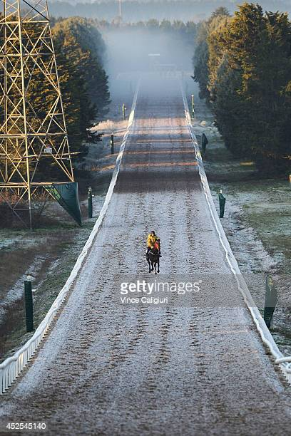 Darren Weir trained galloper makes his way up the 1400 metre straight trainig track in cold and frosty conditions during Ballarat trackwork at...