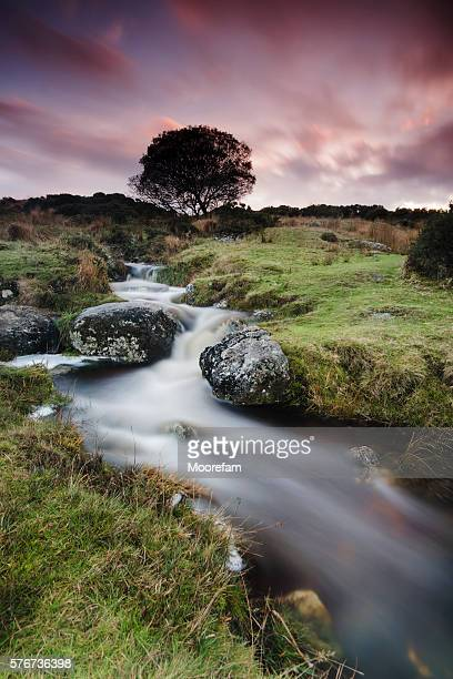 Dartmoor stream and sunset near Postbridge in Devon