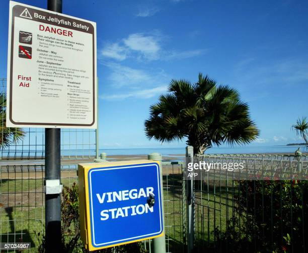 A sign outside a five star hotel warns against swimming in the sea on fear of death in Darwin 08 February 2006 The box jellyfish can cause an...