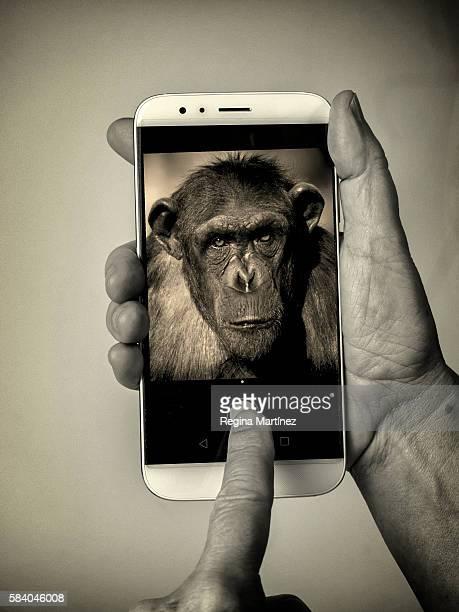 Darwinian selfie