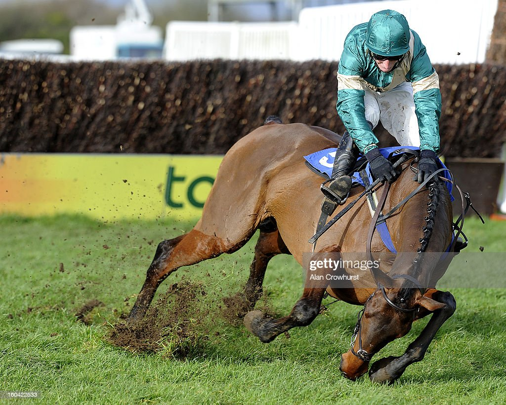 Daryl Jacob falls from Valoroso at the last in The Carling Johny Whitcombe Fan Club Novices' Steeple Chase at Wincanton racecourse on January 31, 2013 in Wincanton, England.