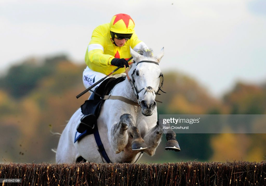 Daryl Jacob riding Al Ferof clear the last to win The Amlin 1965 Steeple Chase at Ascot racecourse on November 23, 2013 in Ascot, England.