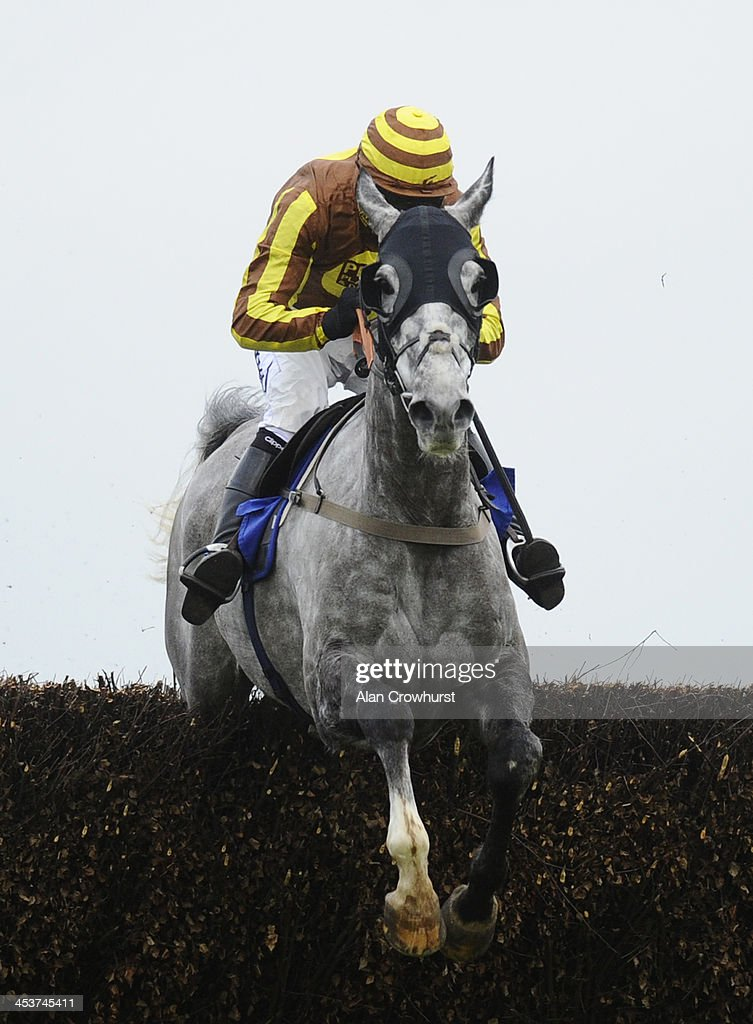Daryl Jacob riding Buck's Bond clear the last to win The Weatherbys Hamilton Insurance Silver Buck Handicap Steeple Chase at Wincanton racecourse on December 05, 2013 in Wincanton, England.
