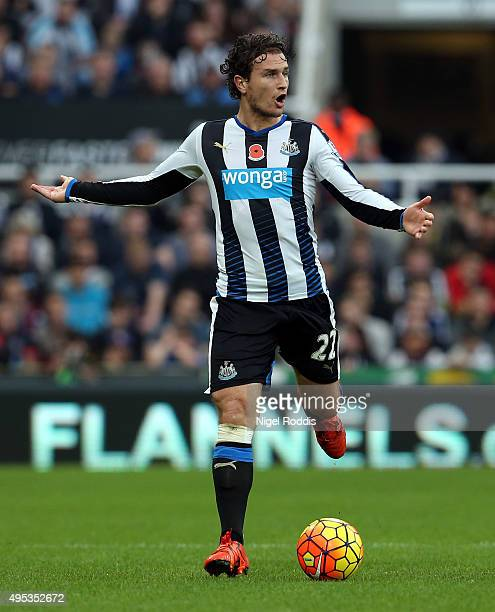 Daryl Janmaat during the Barclays Premier League match between Newcastle United and Stoke City at St James' Park on October 31 2015 in Newcastle upon...