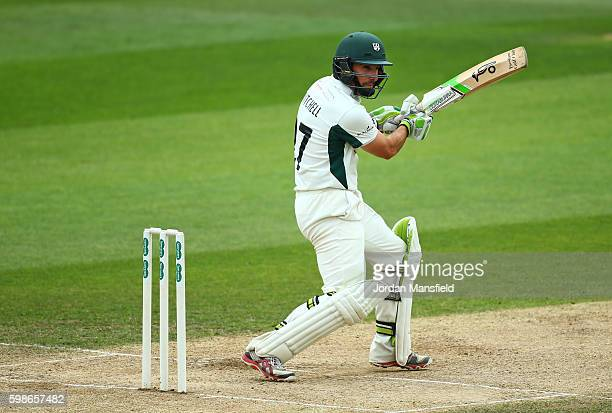 Daryl Mitchell of Worcestershire bats during day three of the Specsavers County Championship Division Two match between Essex and Worcestershire at...