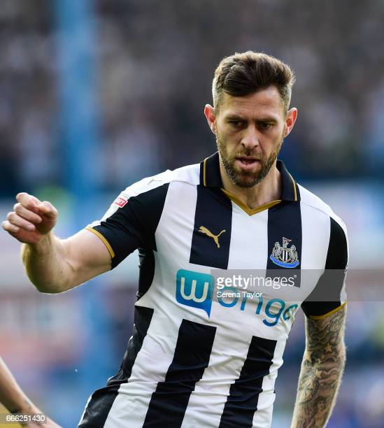 Daryl Murphy of Newcastle United during the Sky Bet Championship Match between Sheffield Wednesday and Newcastle United at Hillsbrough on April 8...