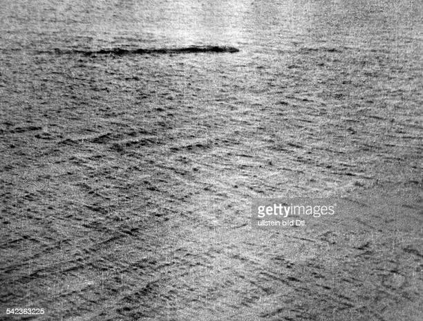 Das Seeungeheuer von Loch NessAufnahme von 1933