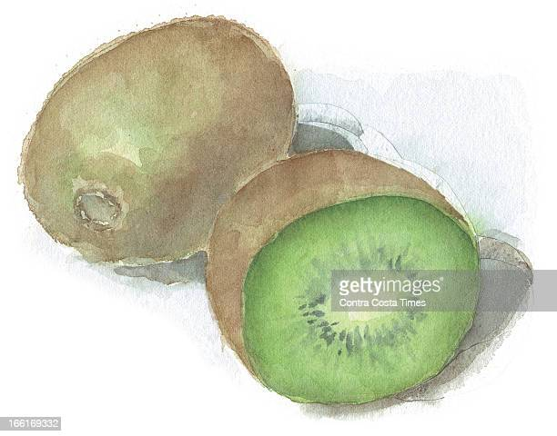 Dave Johnson illustration of a kiwi
