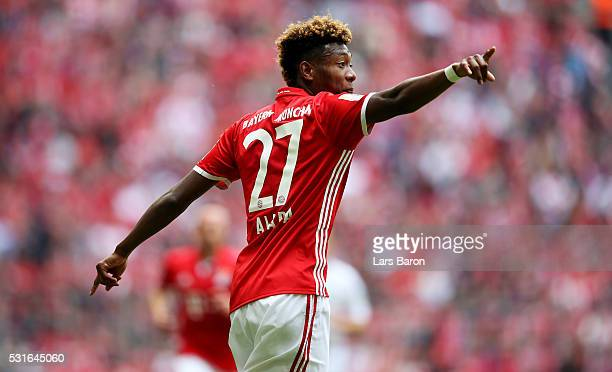 David Alaba of Muenchen gestures during the Bundesliga match between FC Bayern Muenchen and Hannover 96 at Allianz Arena on May 14 2016 in Munich...