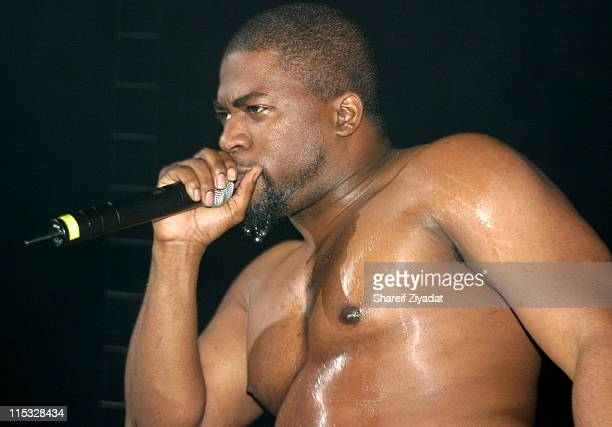David Banner during Ludacris Chingy and David Banner in Concert at Hammerstein Ballroom in New York City New York United States