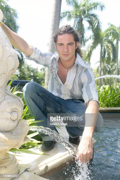 David Bisbal during David Bisbal at the RitzCarlton in Puerto Rico Portraits at RitzCarlton in Isla Verde Puerto Rico